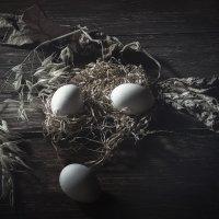 Про яйца без птичек :: mrigor59 Седловский