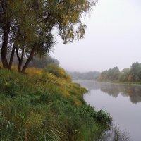 Задумчива тревога тишины... :: Лесо-Вед (Баранов)
