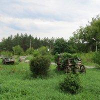 Территория музея камней :: Вера Щукина