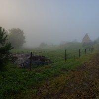 Туманное утро :: Виктор