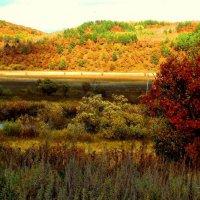 Осенние холмы :: Милла Корн