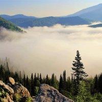Туман скрывает долину :: Сергей Чиняев