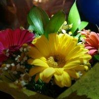 Цветы 2 :: Анастасия Макарова