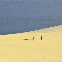 Долгая дорога в дюнах... :: Александр Юдин