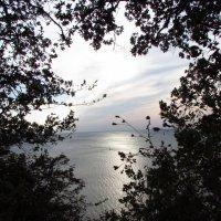 Окно на Черное море :: Варвара Маевская