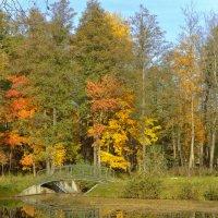 Осенний пейзаж :: bajguz igor