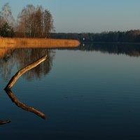 Утро на озере Молочное :: Сергей ***