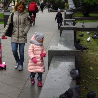 А им не холодно? :: Андрей Лукьянов