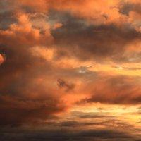 Пламенеет сентябрьское небо :: Татьяна Ломтева