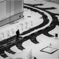 Снежный креатив :: Алексей Федотов