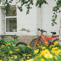В одном из двориков Маркса, Саратовская область :: Елена Primavera