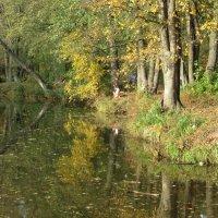 Осень на Цне :: Герович Лилия