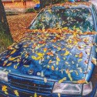 Осень! :: Натали Пам