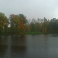 Дождь :: Сапсан