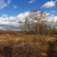 А, вот,  апрель, господа! :: Андрей Лукьянов