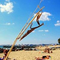 Пляжный наблюдатель :: Alexander Andronik