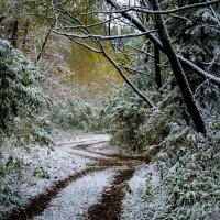 Первый снег первого октября :: Марк Э