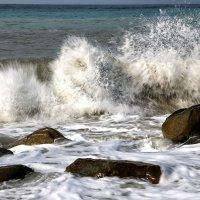 Гнев морского дракона :: Alexander Varykhanov