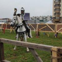 Не принц, но на белом коне :: Регина Пупач