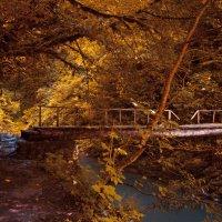Мост через реку Агву :: Владислав Лопатов