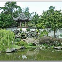 В Китайском саду :: Андрей K.