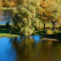 осень у реки :: linnud