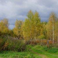 Осень начинает рисовать.. :: марк