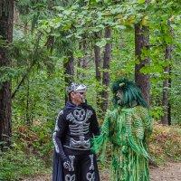Кого только не встретишь в российских лесах :: Андрей Щетинин
