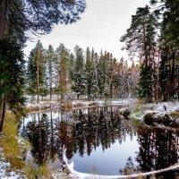 первый снег :: Светлана Луговая