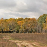 Осень, октябрь :: Николай Масляев