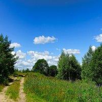 Картинка из минувшего лета :: Милешкин Владимир Алексеевич