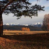 Осеннее утро в Тункинской долине... :: Александр Попов