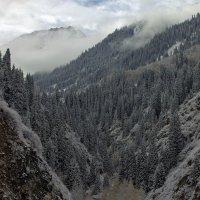 Поседели горы. :: Сергей Савич.