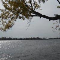 Осенним днём на реке :: Галина