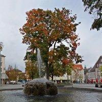 Осень... в городе Augsburg :: Galina Dzubina