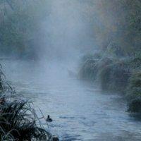 Прикоснитесь к красоте тумана :: олег свирский