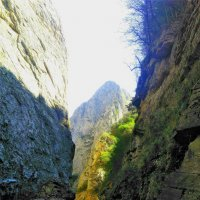 В горах Кавказа :: Алла ZALLA