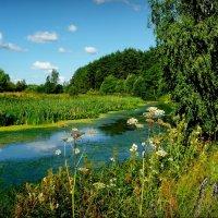 У реки Содышка! :: Владимир Шошин
