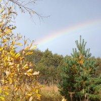 Осенняя радуга :: BoxerMak Mak