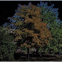 Осень :: Нина Корешкова