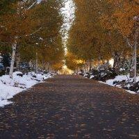 просто осень, просто нравиться... :: Alexandr Staroverov