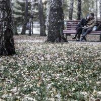 В осеннем парке :: Сергей Елесин