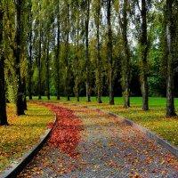 Осенний день... :: Nataly ***