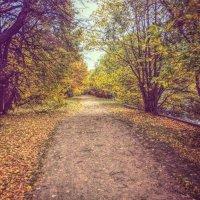 Прогулка в осень! :: Натали Пам