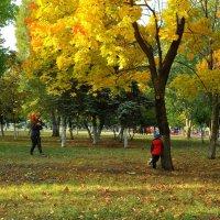 Парк в октябре :: Albina