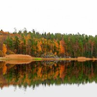 Карелия Осень золотая :: Александр