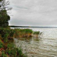 Озеро Нарочь :: Михаил Цегалко