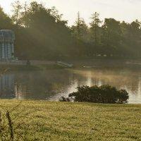 Утренняя дымка большого пруда :: Владимир Гилясев