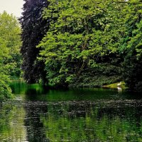 тихий уголок старого парка :: Александр Корчемный