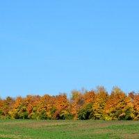 Осень. :: Семён Пензев